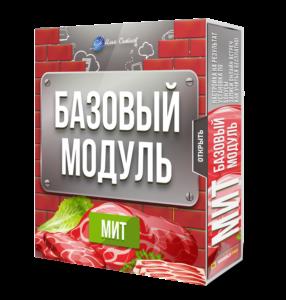 Базовый модуль Годовой программы МИТ